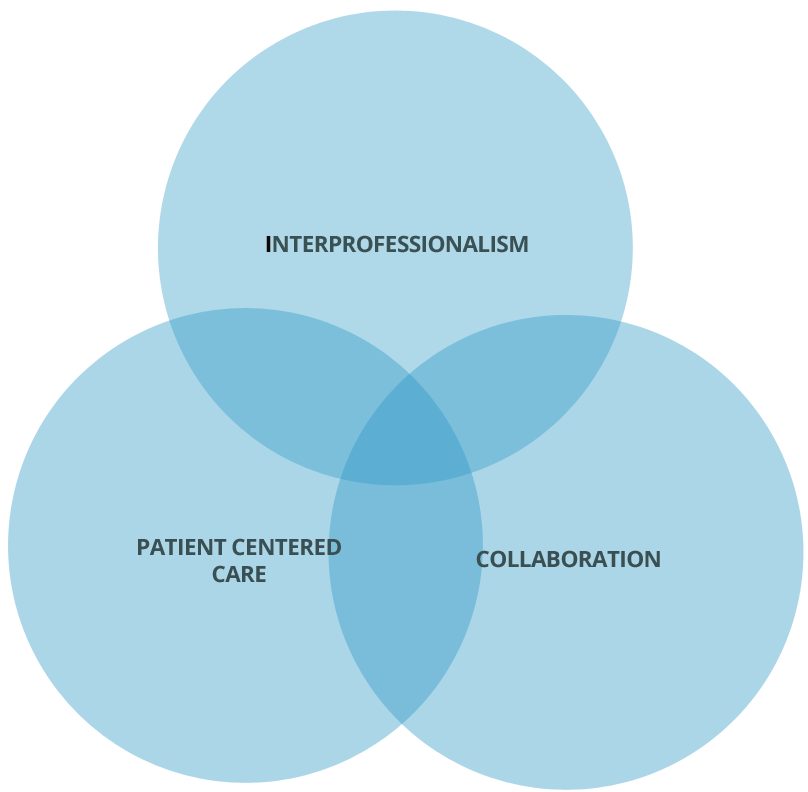 the dimensions of interprofessional practice The collaboration, in accordance to nurse's scope of practice, involved referring the patient to various team as required like the medical and palliative care team, physiotherapist, occupational therapist, social worker, counselor and discharge coordinator.